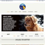 Golden Retriever Rescue Thumbnail